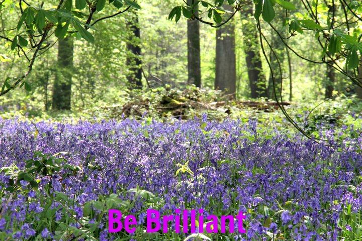 Be Brilliant 3