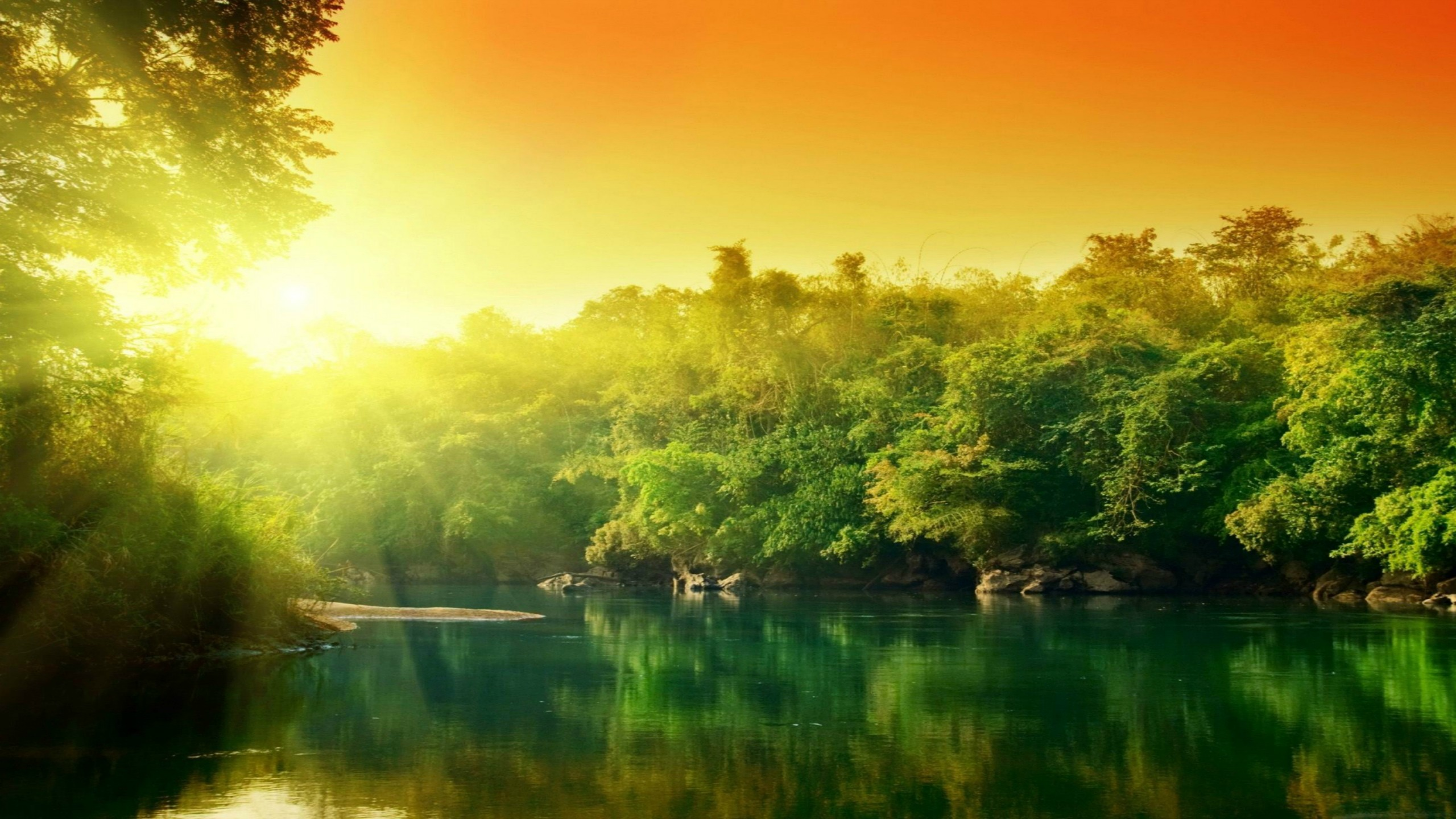 Aa Lush Green Forest River At Sunrise Beautiful River