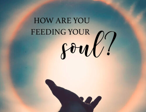 what feeds your mind and spirit?